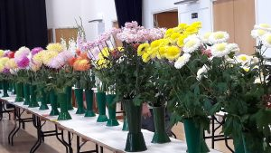 Chrysanthemums and Dahlias on display at the Horticultural and Produce Show