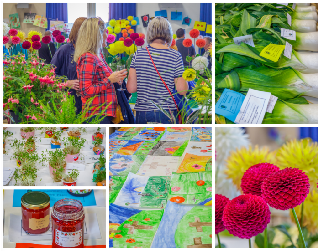 Horticultural Show 2018, Collage Photograph