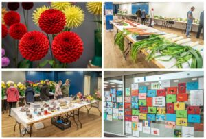 Horticultural Show 2019 Photo Collage