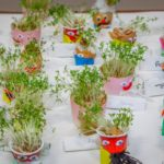 A selection of Cress head characters, entered into the Children's section
