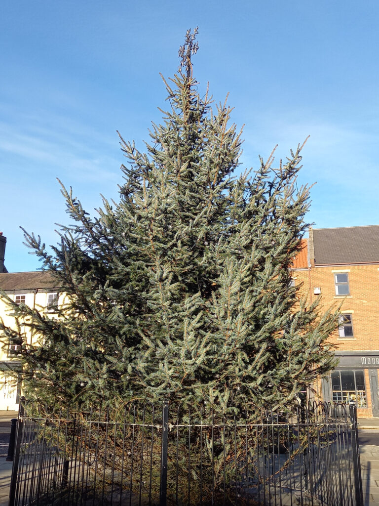 Christmas Tree outside of Bishop Auckland Town Hall