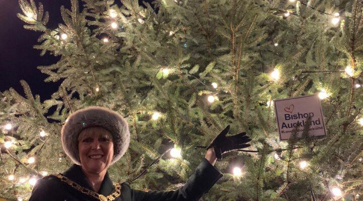 Councillor Joy Allen With Christmas Tree