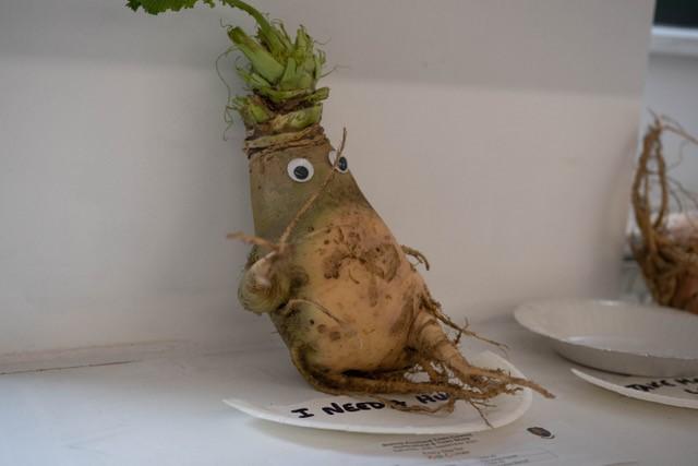 Wonkey Vegetable in the Children's Classes